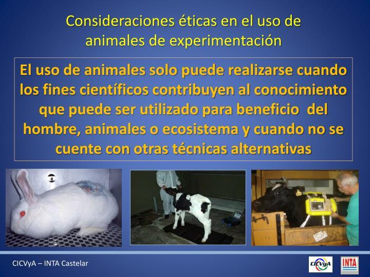 Consideraciones éticas en el uso de