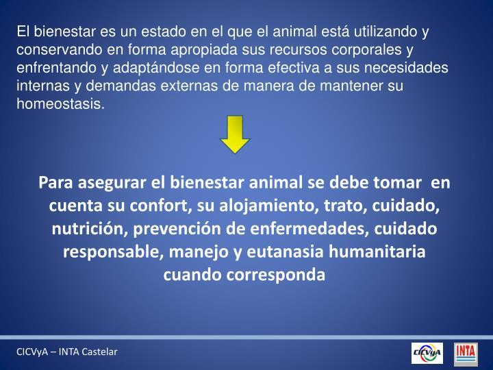 El bienestar es un estado en el que el animal está utilizando y conservando en forma apropiada sus recursos corporales y enfrentando y adaptándose en forma efectiva a sus necesidades internas y demandas externas de manera de mantener su homeostasis.