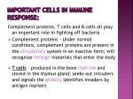 important cells in immune response