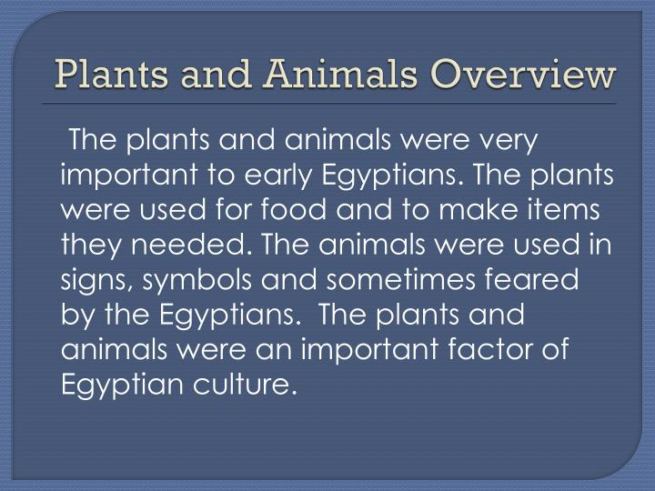Plants and animals overview