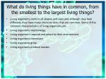 what do living things have in common from the smallest to the largest living things