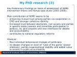 my phd research 3