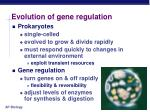 evolution of gene regulation