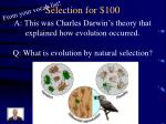 selection for 1001