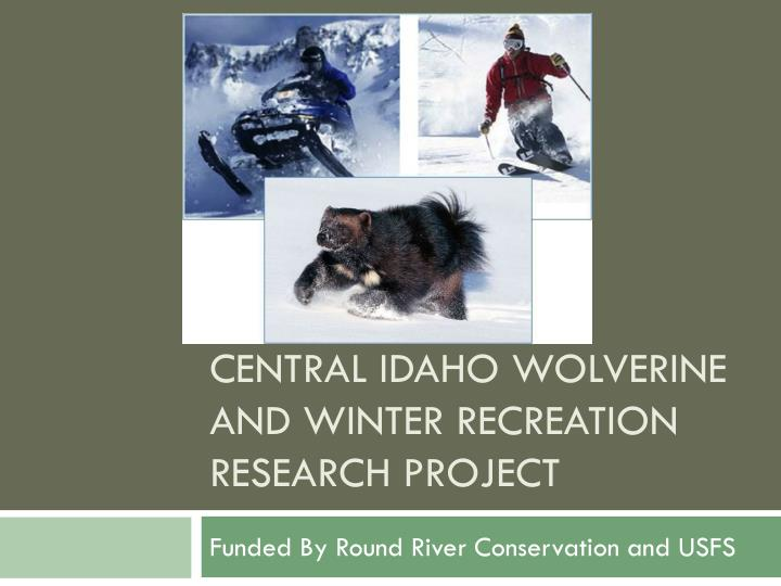 central idaho wolverine and winter recreation research project n.
