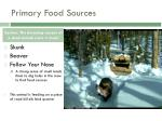 primary food sources