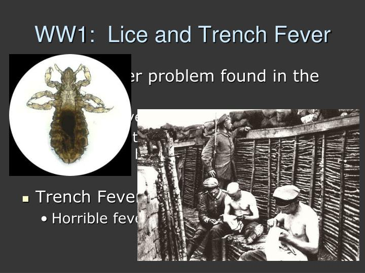 WW1:  Lice and Trench Fever
