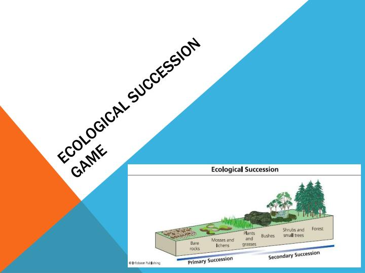 ecological succession game n.