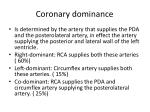 coronary dominance