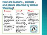 how are humans animals and plants affected by global warming