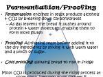 fermentation proofing