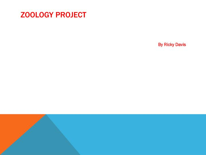 zoology project n.