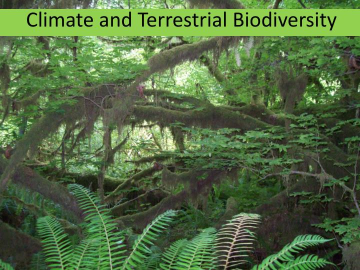 climate and terrestrial biodiversity n.
