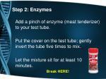 step 2 enzymes