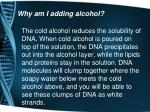 why am i adding alcohol