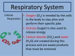 respiratory system3