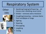 respiratory system9