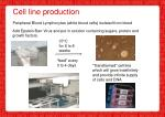cell line production