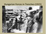 hungarian forces in trenches 1915