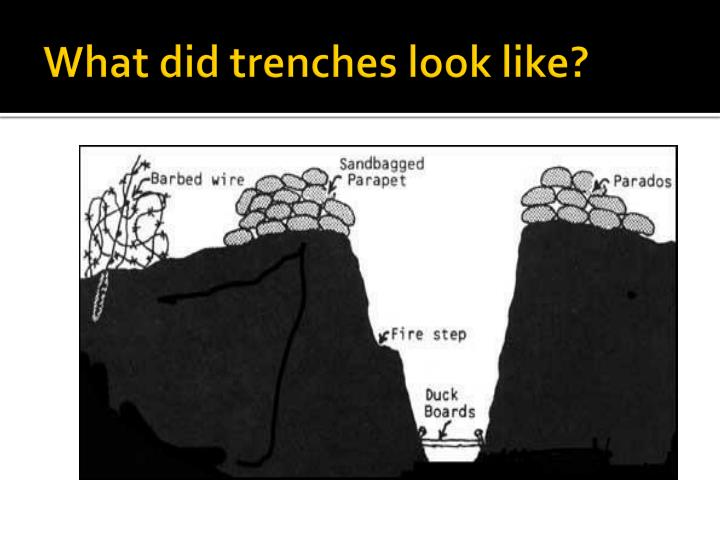 What did trenches look like?