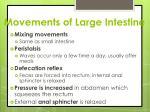 movements of large intestine