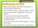swallowing action