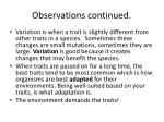observations continued