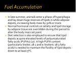 fuel accumulation
