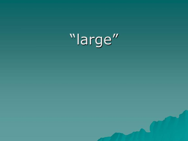 """large"""