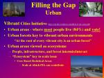 filling the gap urban1