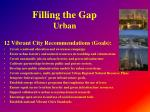 filling the gap urban2