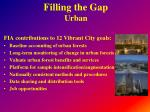 filling the gap urban3