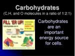 carbohydrates c h and o molecules in a ratio of 1 2 1