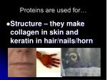 proteins are used for