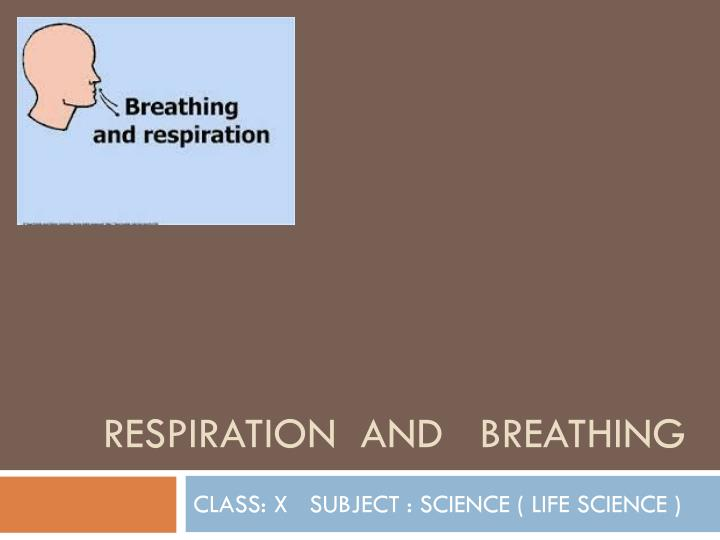respiration and breathing n.