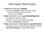 oral cavity teeth cont