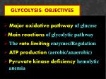 glycolysis objectives