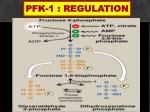 pfk 1 regulation