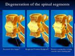 degeneration of the spinal segments