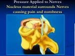 pressure applied to nerves nucleus material surrounds nerves causing pain and numbness