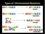 types of chromosomal mutations
