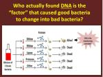 who actually found dna is the factor that caused good bacteria to change into bad bacteria