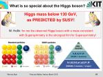 what is so special about the higgs boson