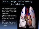 gas exchange and pulmonary circulation