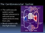 the cardiovascular system1