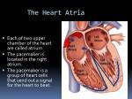 the heart atria