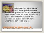 organizaci n social