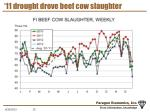 11 drought drove beef cow slaughter