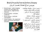 brain muscle nerve artery biopsy
