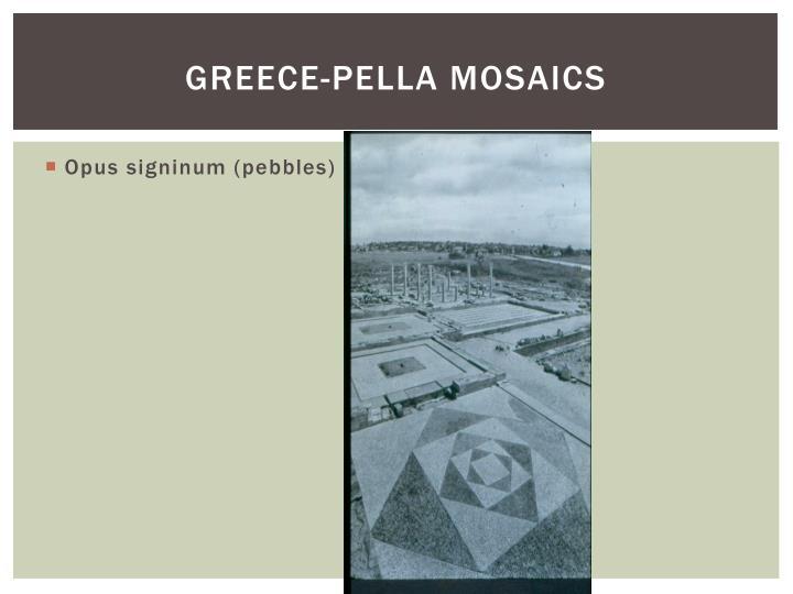 Greece pella mosaics